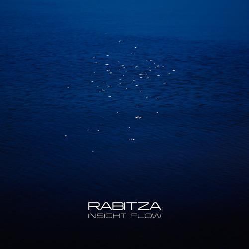 Rabitza - Insight Flow [Ambione Foundation] 2008