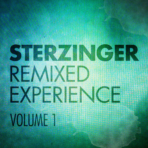 2011 remixed experience vol.1