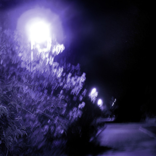 Nightmusic - Arrangement by Rudolf Schmitt. collab