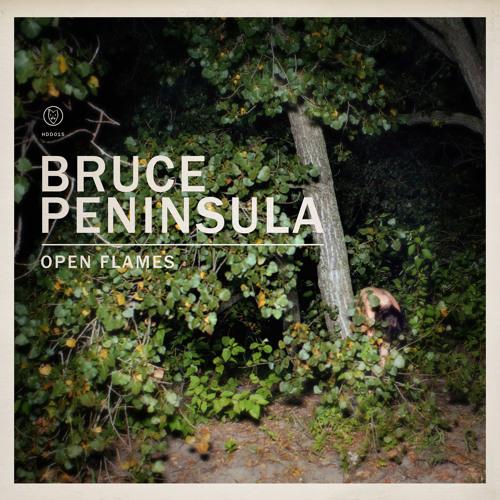 In Your Light - Bruce Peninsula