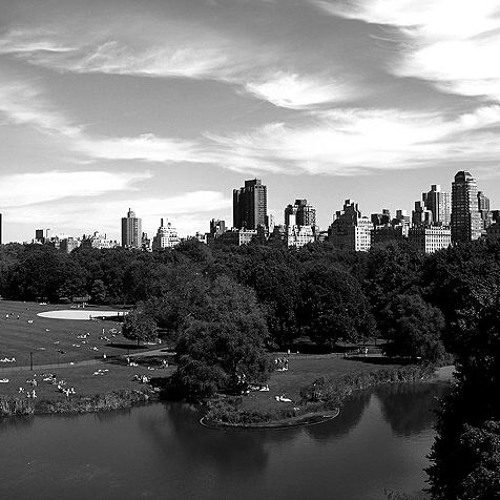 Central Park Sunrise - collaboration The Plugs & Oorlab