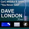 Cerf, Mitiska & Jaren - You Never Said (Dave London Remix)