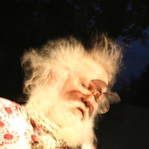 Wicked Witches of the South/Fizznuckin' - R Stevie Moore TWWOTS