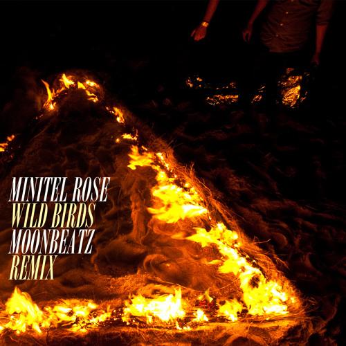 Minitel Rose - wild birds (Handtronik remix)