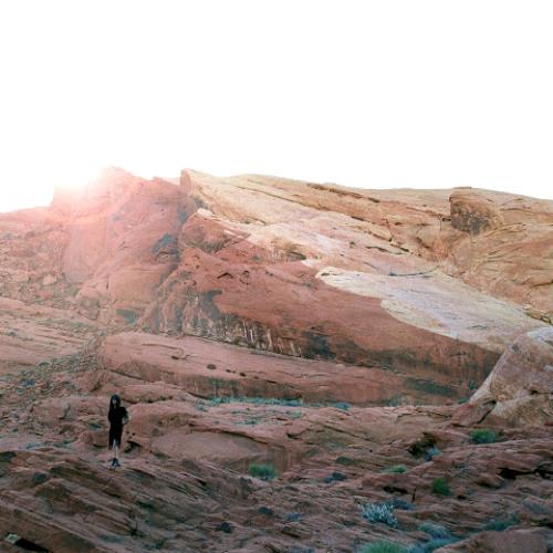 Tamaryn - Sandstone