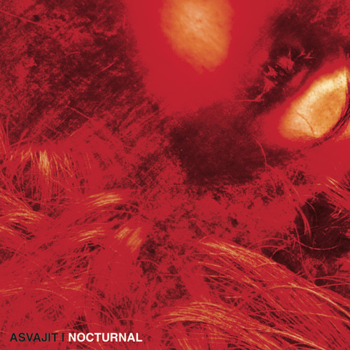 Nocturnal (Original Mix)