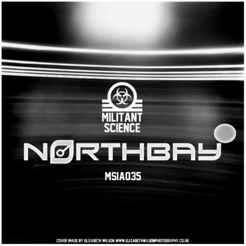 NorthBay - Analogue Ham E.P - MSIA035 (Militant Science)