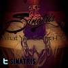 Sinatris- What You Gonna Do (Unmastered)