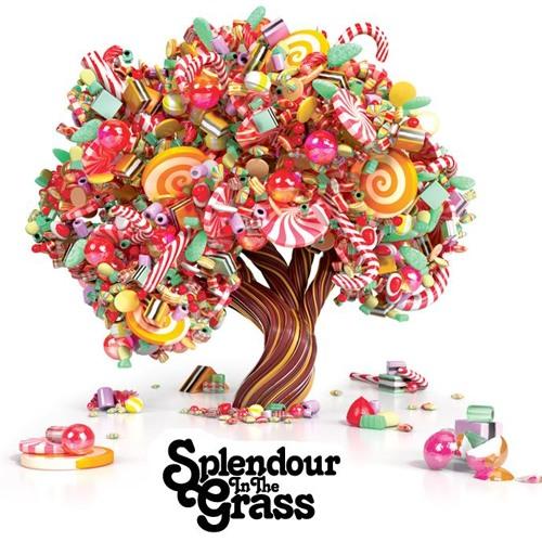 Splendour in the Grass 2011 Opening set (Live Excerpt)