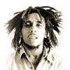 Download Bob Marley - Exodus (Flowbox Bootleg) SC Snip Mp3