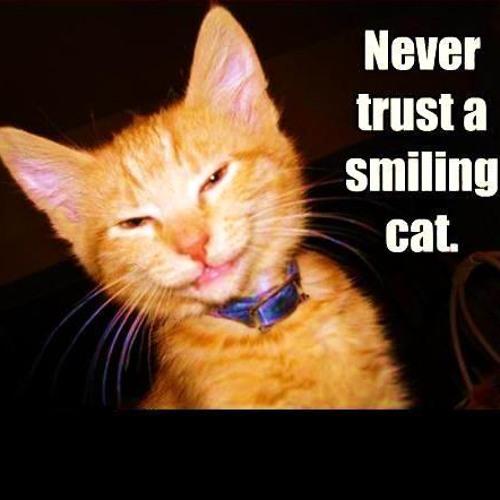 "Phuture Traxx ""Never trust a smiling cat""-Mix (Sept. 2011)"