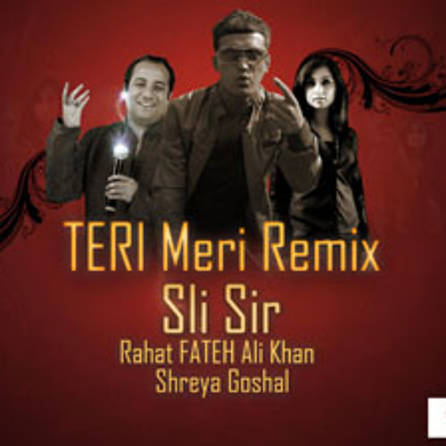 Sli Sir - Teri Meri remix (Offcial)