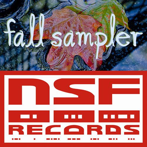 Not So Fast Records Fall Sampler