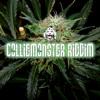 Shabba Ranks, Sizzla, Stitchie, Capleton, Vybz Kartel, CollieMonsterRiddim-Mix [FOOD PALACE MUSIC]