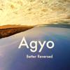 Agyo - Requiem For A Kiss