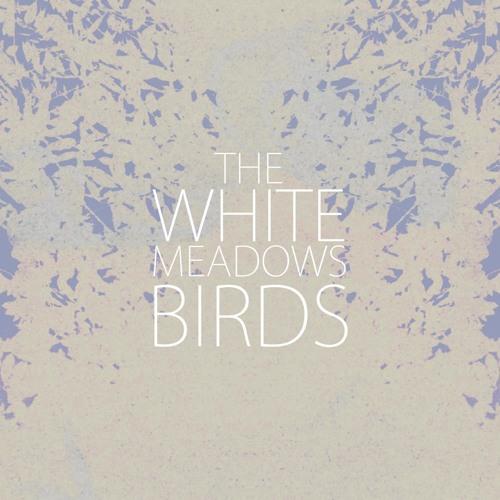 The White Meadows - A Time For Drunken Horses - Birds