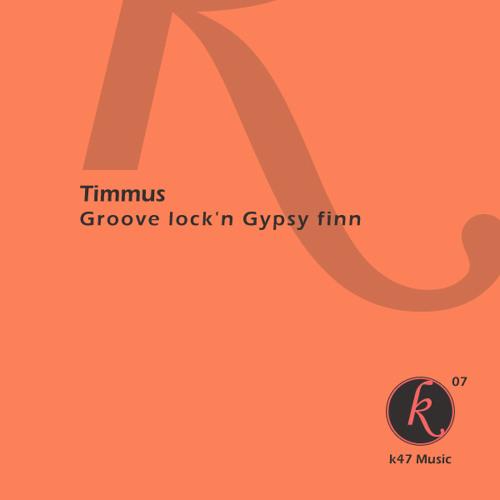 TIMMUS - Groove lock'n gypsy finn