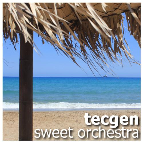 Sweet Orchestra (Original Mix) [Disco Soul Rec.]