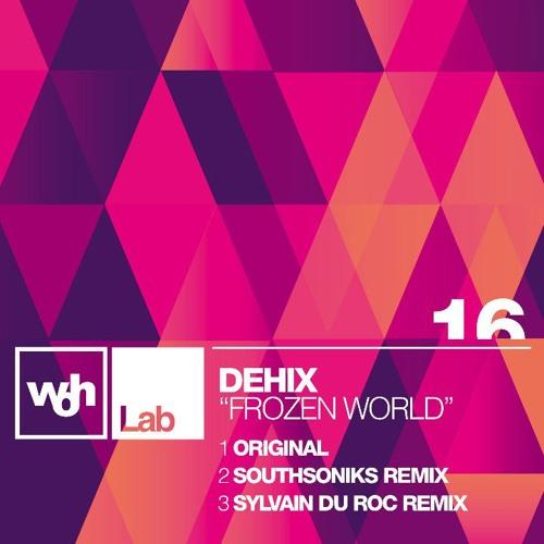 Dehix -  Frozen World (Sylvain Du Roc Remix)