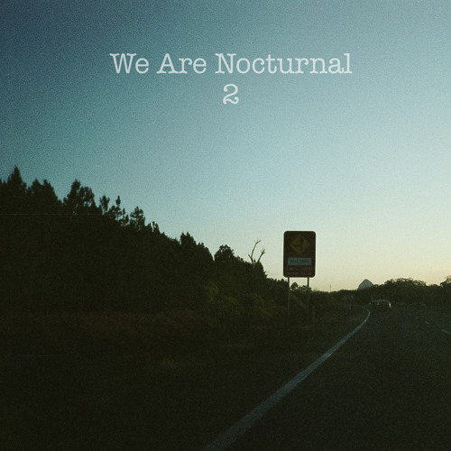 We Are Nocturnal 2