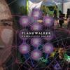 Michael Martin Murphey - Dancing in the Meadow (Planewalker Remix)