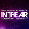 Morgan Page, Sultan + Ned Shepard, & BT - In the Air feat. Angela McCluskey (Hard Rock Sofa Remix)
