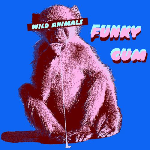 Funky Gum (Original Mix)