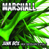 Marshall Presents Junk Box Mix Sessions (Vol. 01)