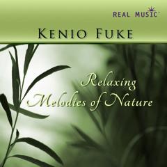 Kenio Fuke - Soul