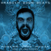 ORABICH DOWN BEATS-MODERN TIME MUSIK(series)vol.2-NU+HOUS