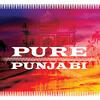 Punjabi 10