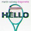 Martin Solveig Dragonette f. Roul and Doors - Hello Gita (Arti360 Live Mashup)