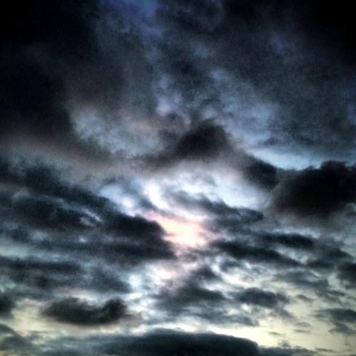 Sky Belugas