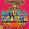 Laidback Luke vs Example - Natural Disaster (Chris Kaeser remix) MP3 Download