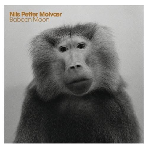 Beitrag Nils Petter Molvaer - Baboon Moon