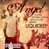 Liquideep☆Angel (Sean Mcabe Remix)☆