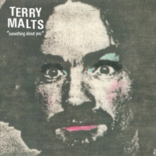 Terry Malts - Something About You
