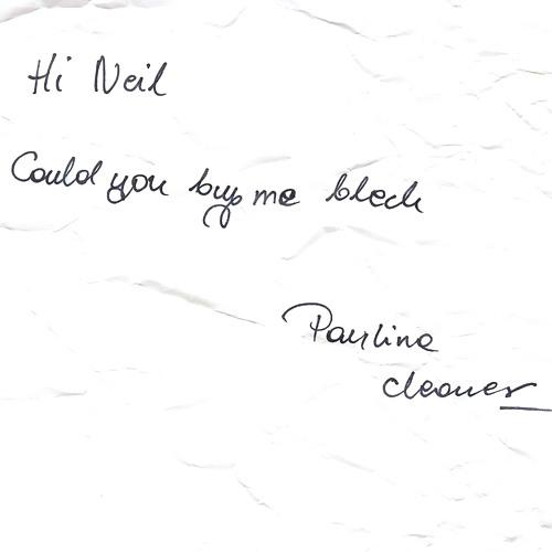 Paulina The Cleaner
