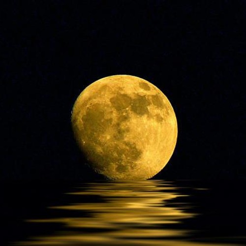 Harvest Moon (Neil Young)