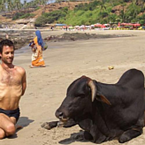 Yoga Dealer Live: When am I ready to go to Mysore, India
