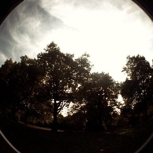 Autumn - Free Download