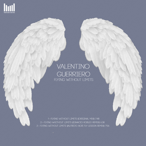 Valentino Guerriero - Flying Without Limits (Original Mix) °SNIPPET°