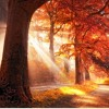 Time Again/Hello Autumn Album Up For Download Now ==========>