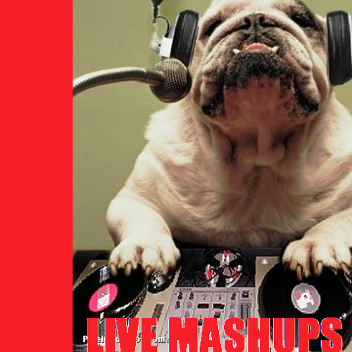 LIVE MASHUP MIXTAPE 2011 BY DJ LK