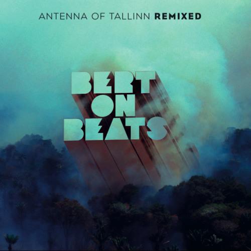 Bert On Beats - Girl Ninja (Hortus Musicus remix)