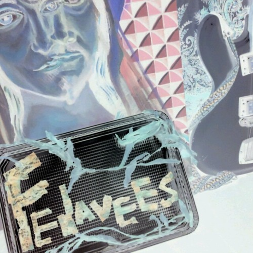 'Freedom Freezes Over'- FEDAVEES
