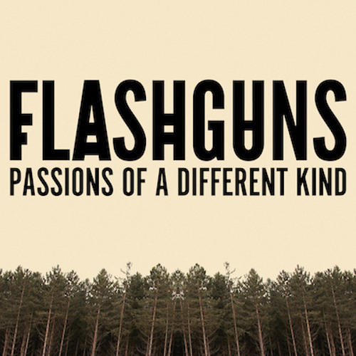 Flashguns - Racing Race