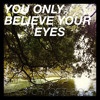 You Only Believe Your Eyes