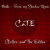 Unkle - Burn my Shadow (C.a.T.E Remix)
