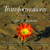 Earth's Song Five - Transformations Music Series VOL IV Earth SAMPLE